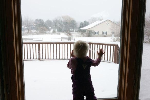 ruby.widow.snow